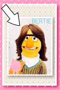 Bertie_Sesamstraat